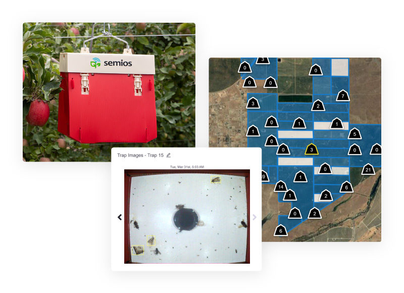 A view of the Semios trap catch dashboard containing a map of trap counts and a trap image from an automated camera trap